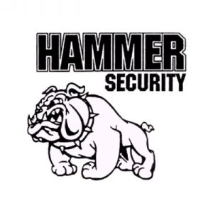 Hammer Security